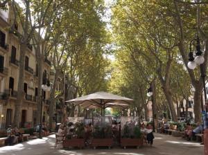 Blog_Firmenreise_Palma 2