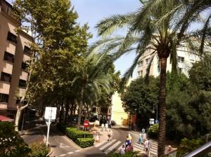 Blog_Firmenreise_Palma