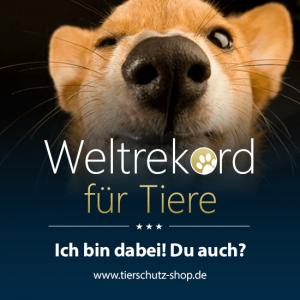 Weltrekord-Profilbild-Hund2_Sophist Blog